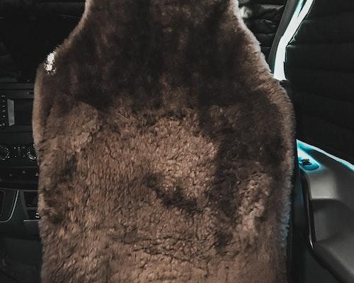 sprinter van seat covers