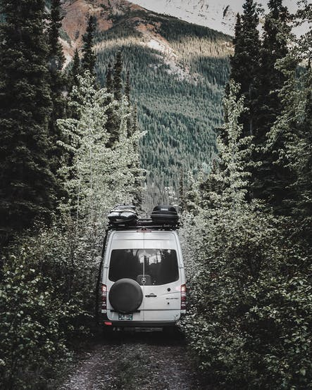Van heading into the forest