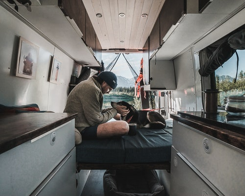 Converted Sprinter Van and Dog
